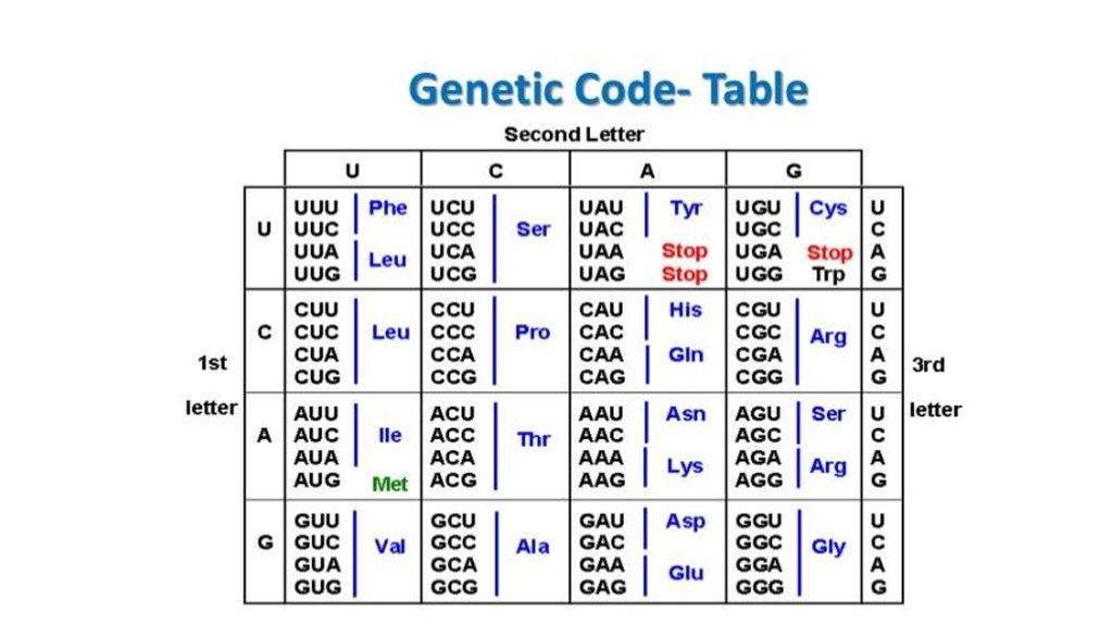Dna Code Entschlüsseln Online