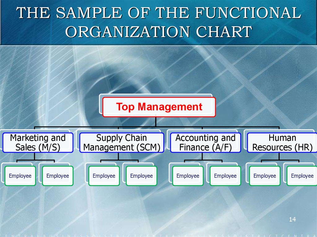THE SAMPLE OF THE FUNCTIONAL ORGANIZATION CHART
