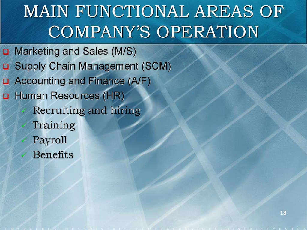 MAIN FUNCTIONAL AREAS OF COMPANY'S OPERATION