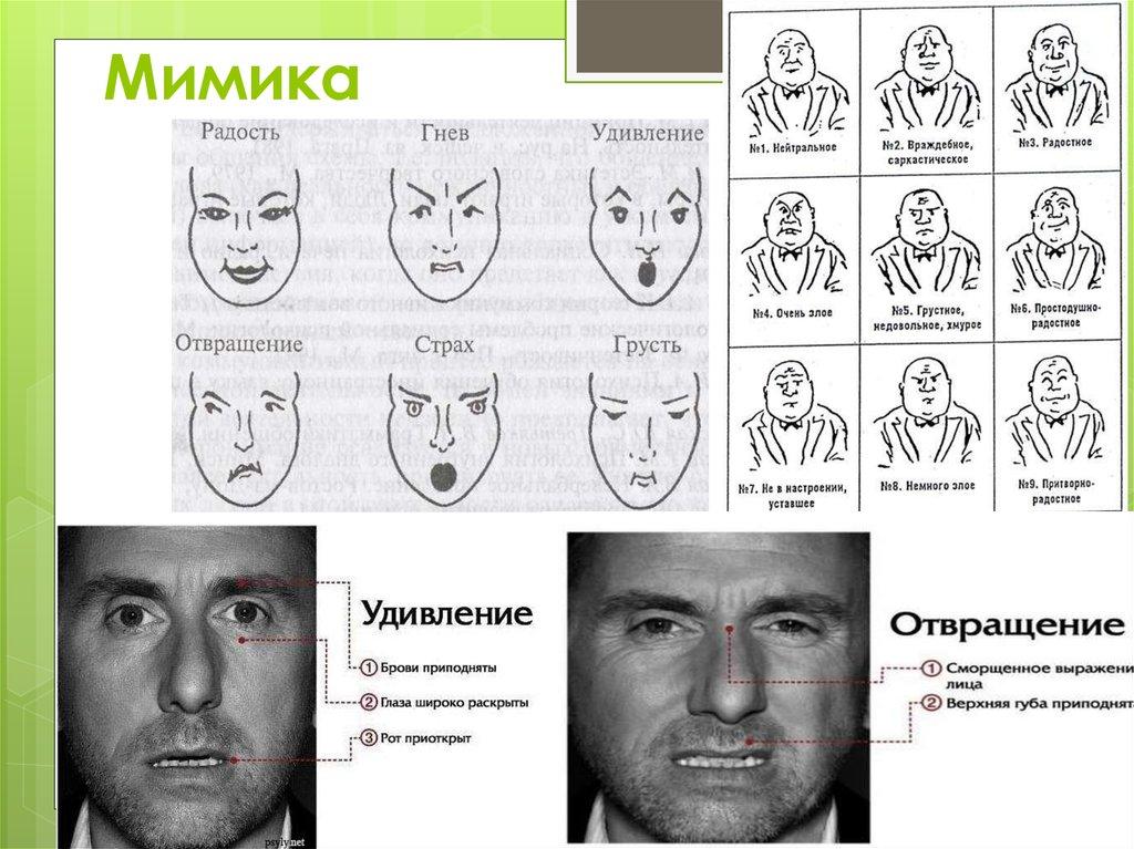Тест жесты и мимика с картинками