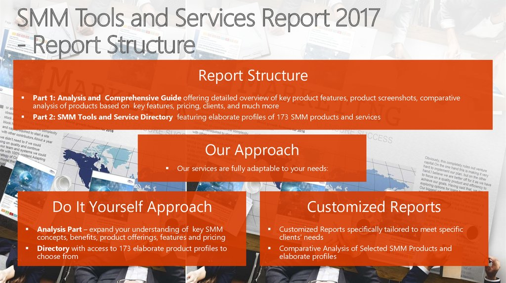 SMM Tools and Services Report 2017 - Report Structure