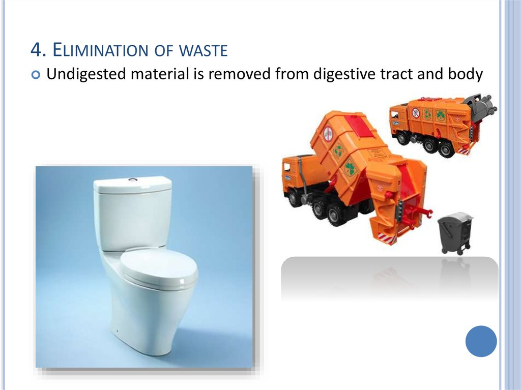 4. Elimination of waste