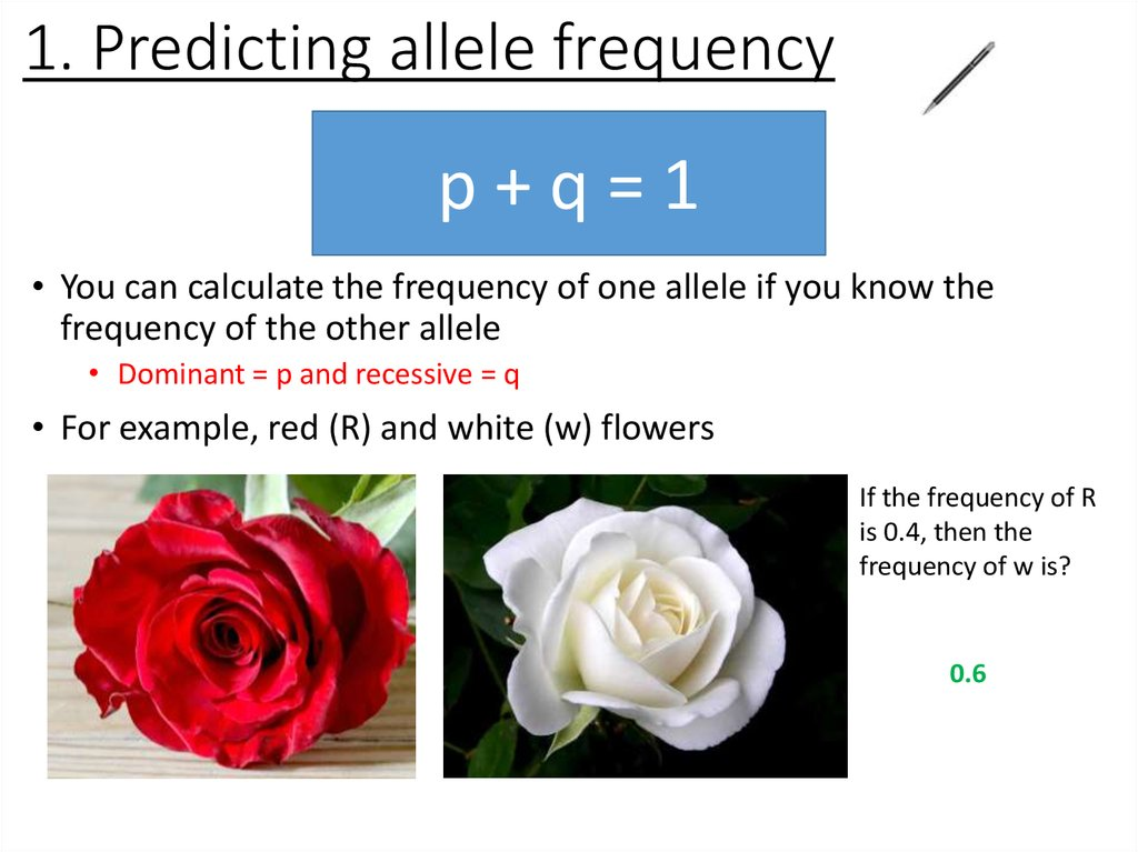 1. Predicting allele frequency