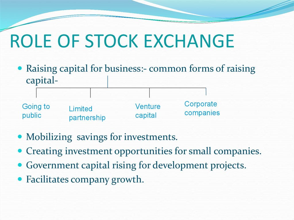 role of stock exchange