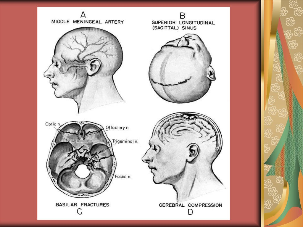 Anatomical and physiological substantiations of the operative ...