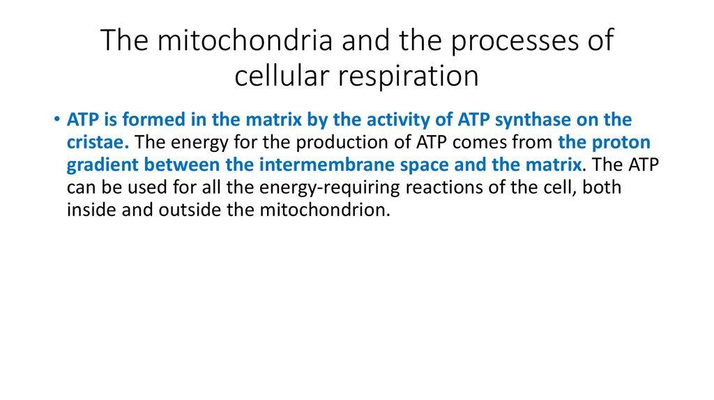 a science report on the process of cell respiration Respiration is one of the key ways a cell releases chemical energy to fuel cellular activity cellular respiration is cellular respiration is the process by.