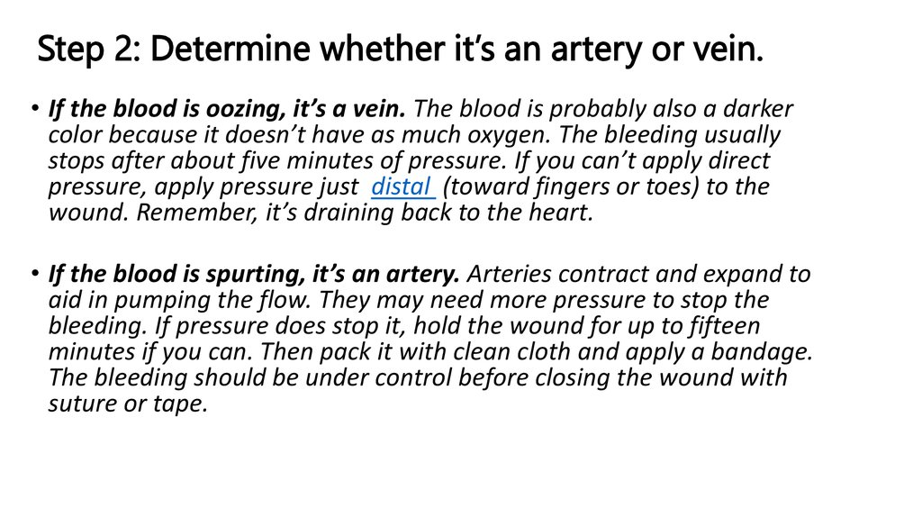 Step 2: Determine whether it's an artery or vein.