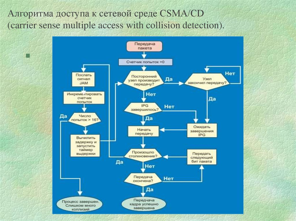 Алгоритма доступа к сетевой среде CSMA/CD (carrier sense multiple access with collision detection).