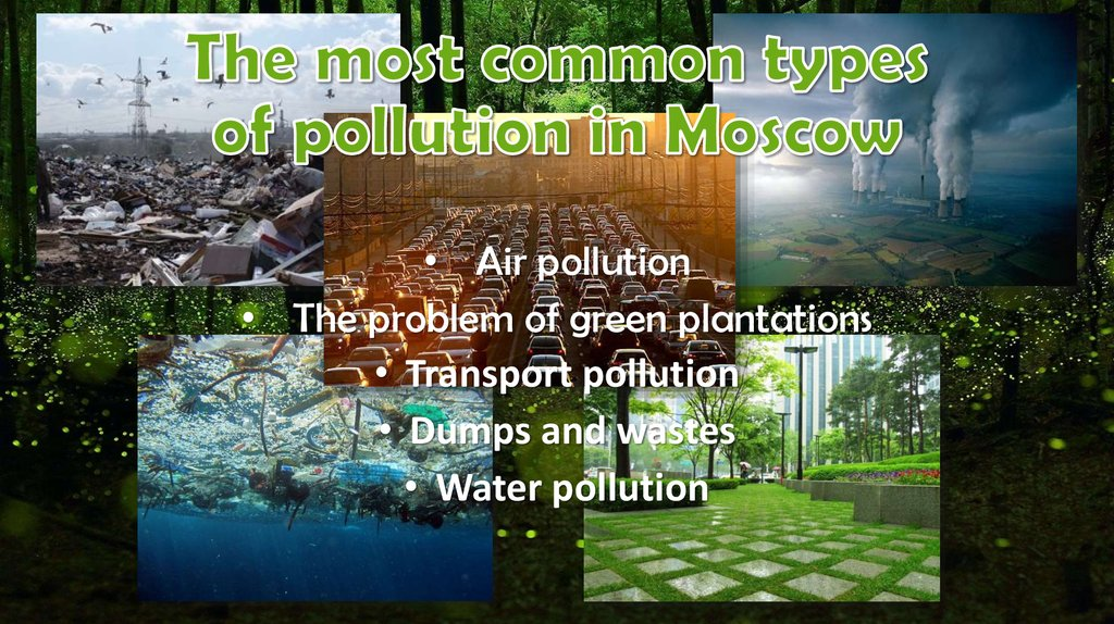 The most common types of pollution in Moscow