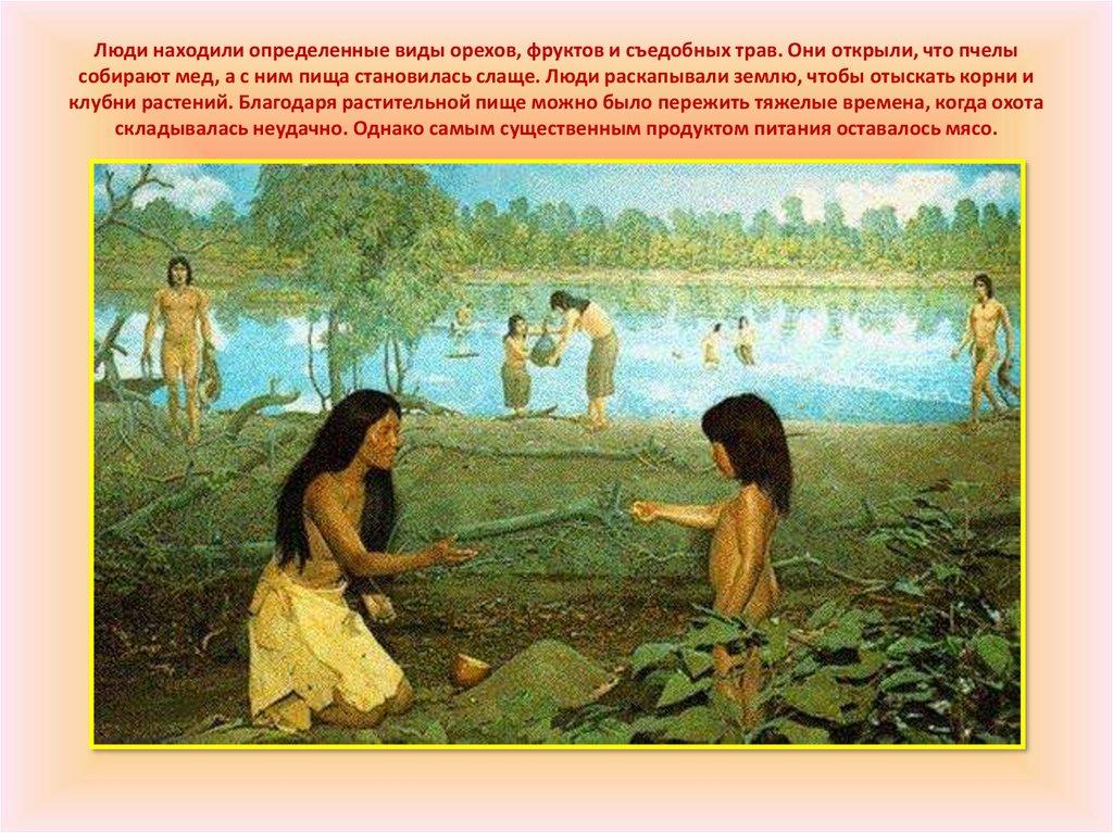 картинки древние люди собирают растения странице