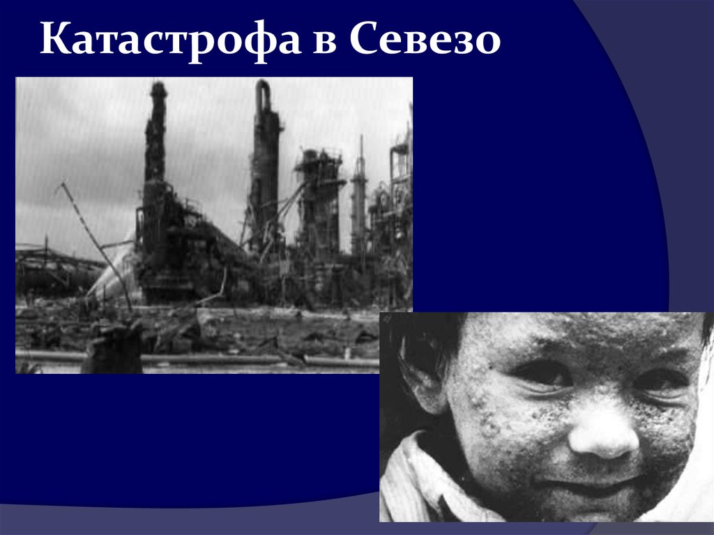 the seveso disaster essay Health and safety assignment a four other major accidents introduction to professional studies daniel iles contents chapter 1 ± introduction 11 introduction chapter 2 ± h & s of accidents 21 the explosion at shell¶s pernis refinery in 1968 22 the µdioxin¶ release at seveso in 1976 23 the bhopal disaster in 1984 24 the piper alpha disaster in 1988 chapter 3 ± could a similar.