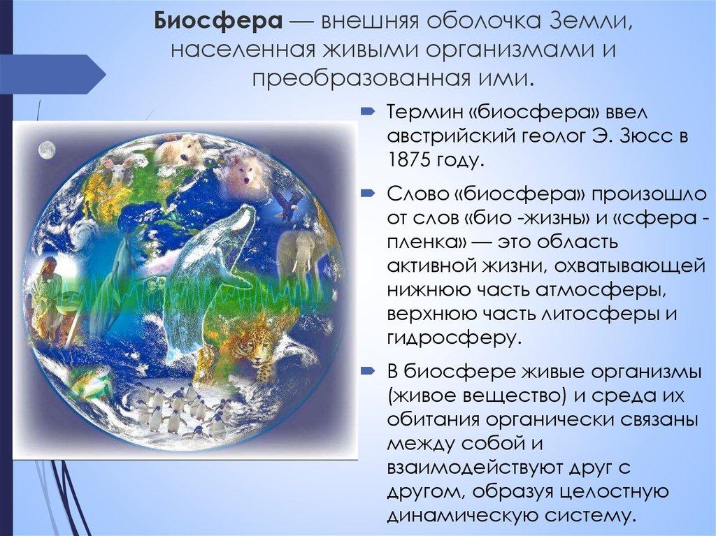 экосфера экологическая оболочка земли картинки благодаря