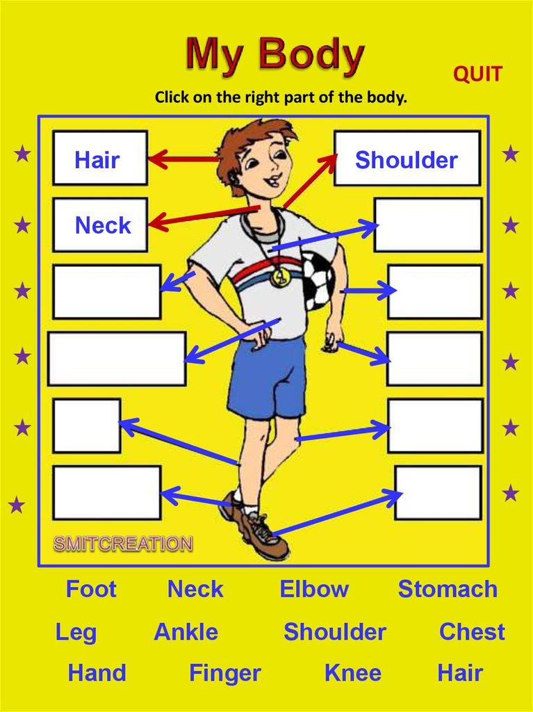 Body Parts Online Presentation