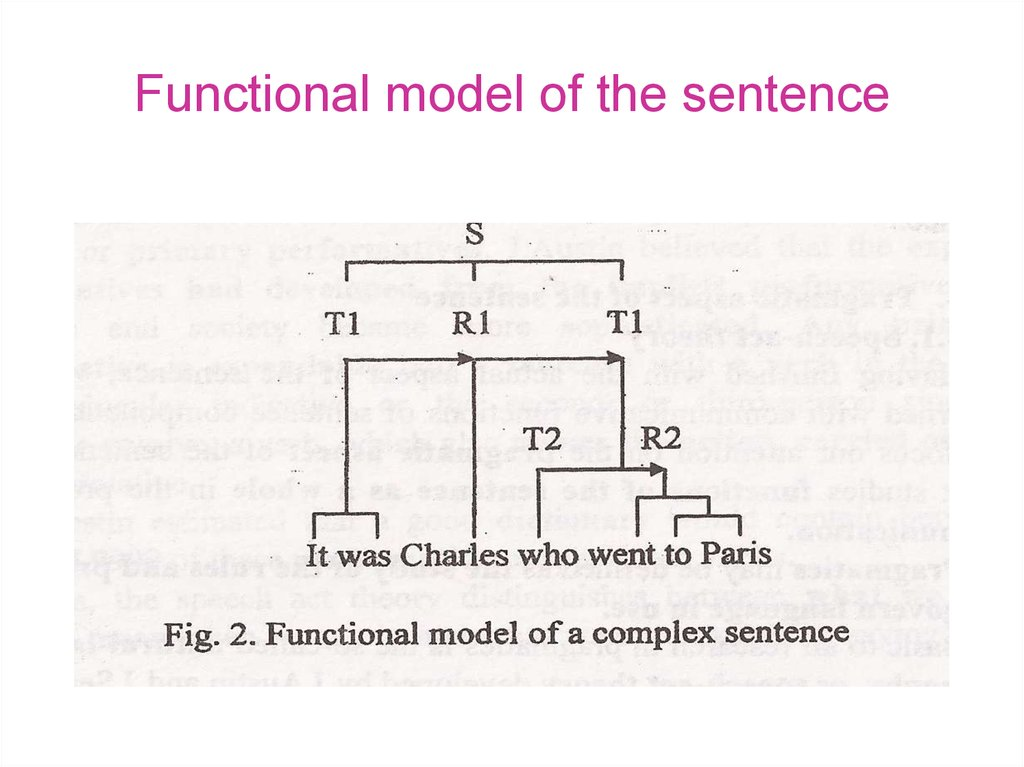 Functional model of the sentence