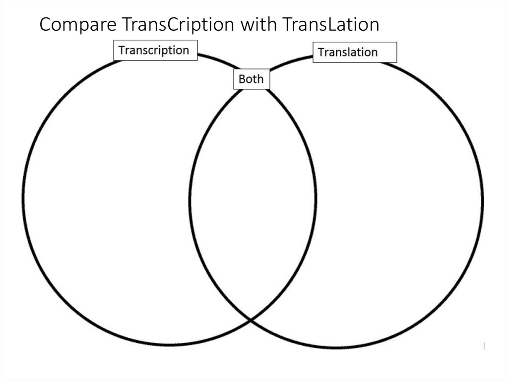Compare TransCription with TransLation