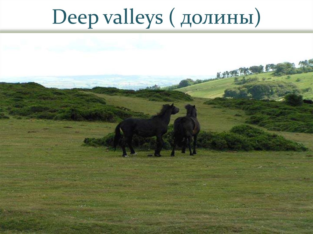 Deep valleys ( долины)