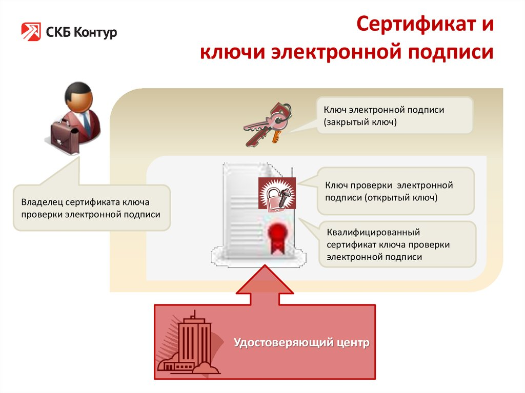 сертификат эцп картинка газеты фотографией полуголых