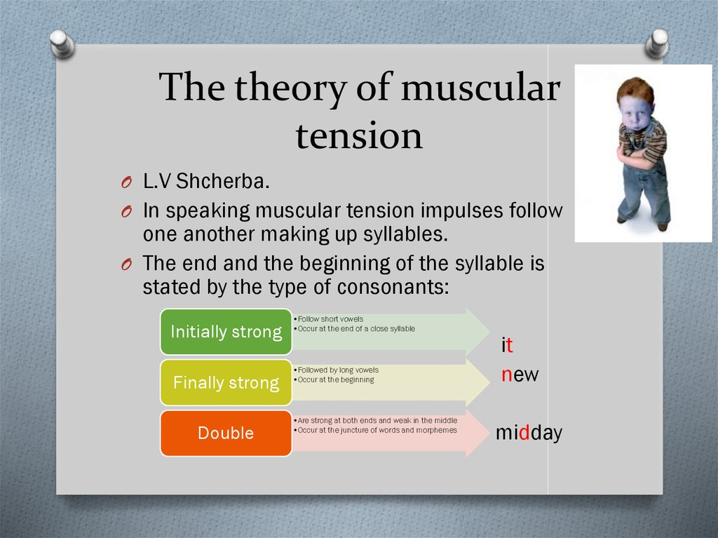 The theory of muscular tension