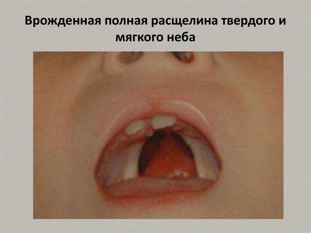Стоматологический портал