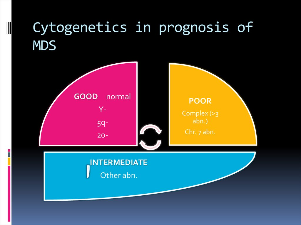Cytogenetics in prognosis of MDS