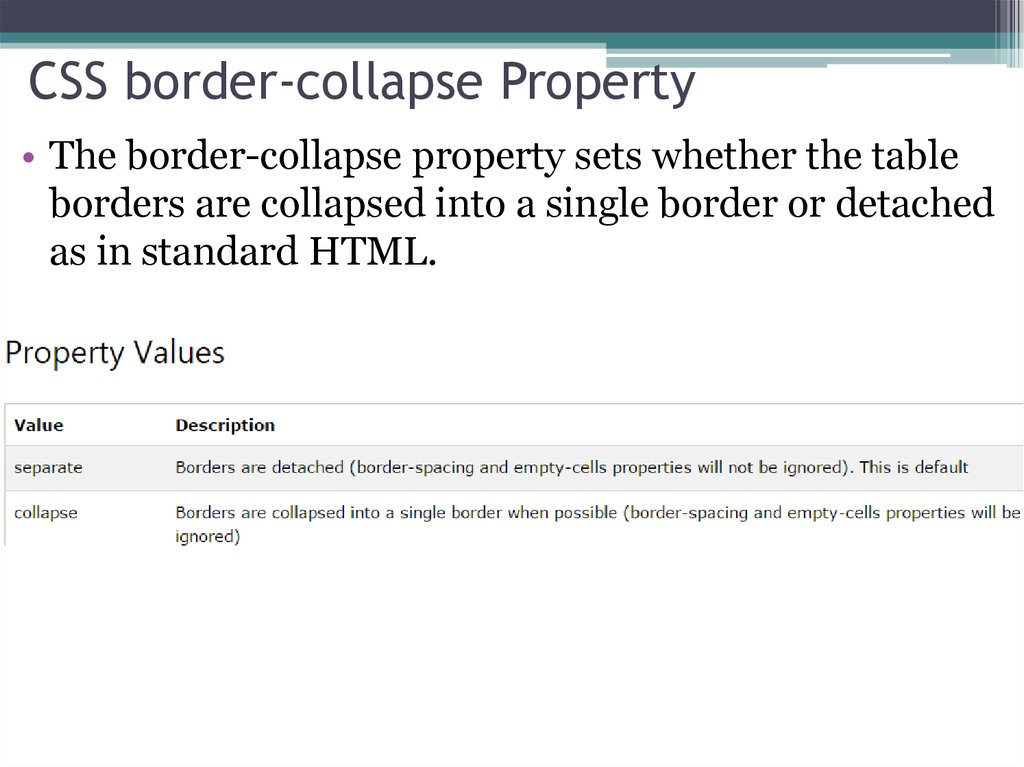 CSS border-collapse Property