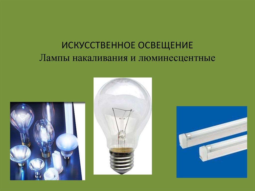 book Lippincott