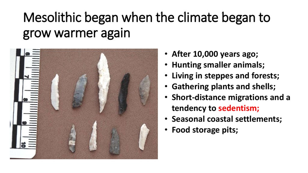 Mesolithic began when the climate began to grow warmer again