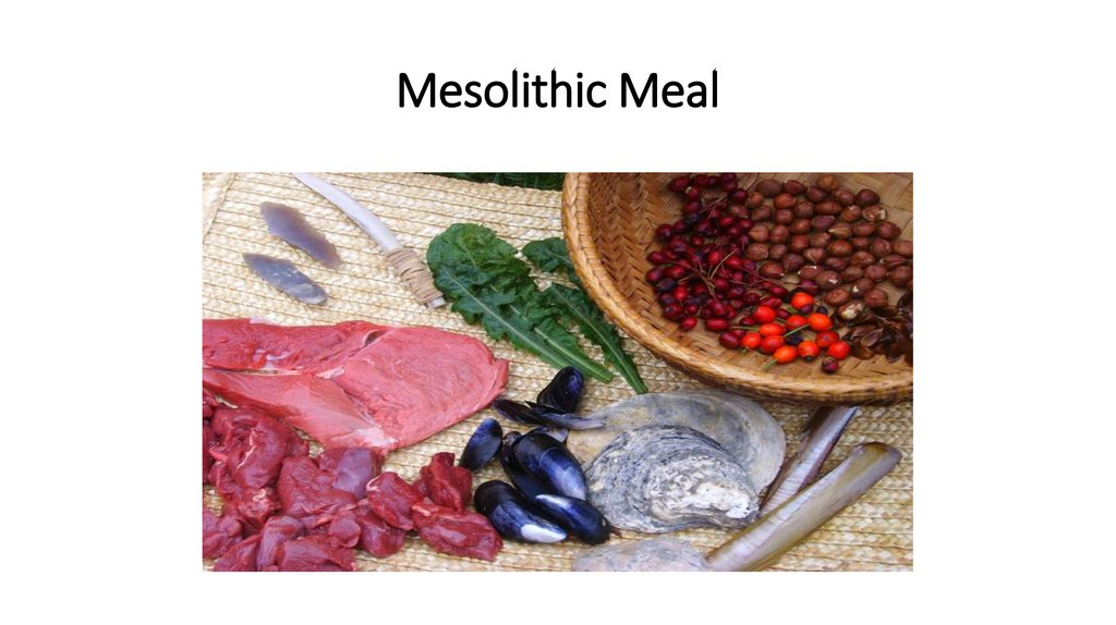 Mesolithic Meal