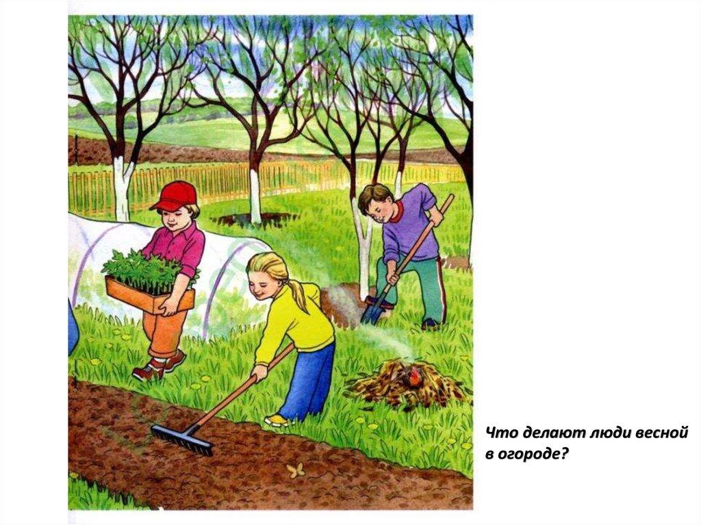 подсоединения человечки в огороде картинки это