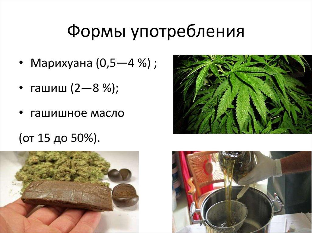 Усиление гашишного масла Конопля Прайс Уссурийск