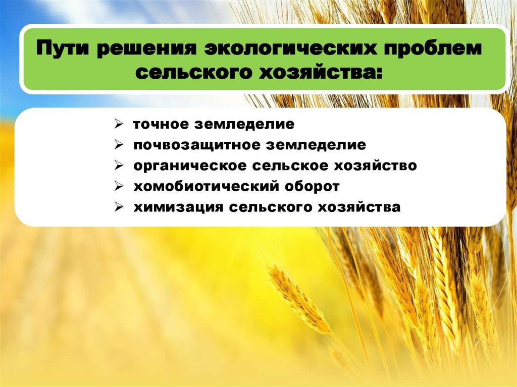 Экологические проблемы сельского хозяйства доклад 7065