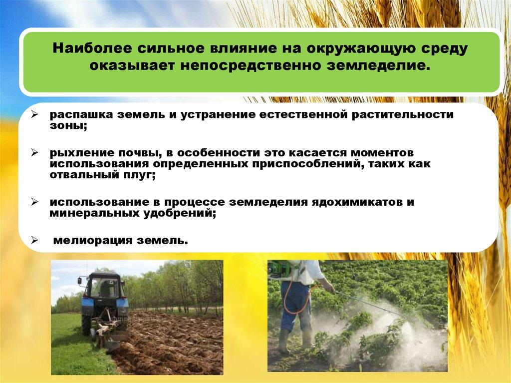 Доклад сельское хозяйство и окружающая среда 7149