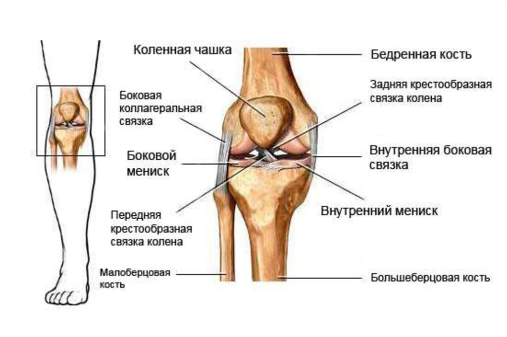 Открытые повреждения коленного сустава признаки рак тазобедренного сустава