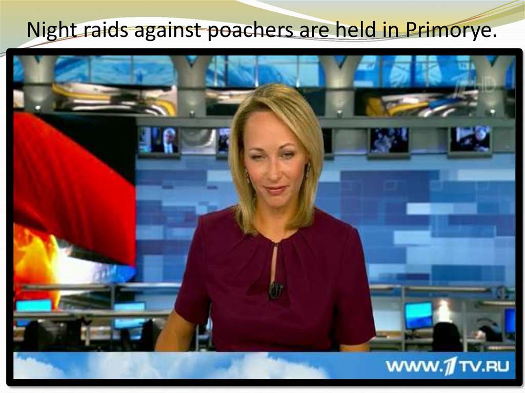Night raids against poachers are held in Primorye.