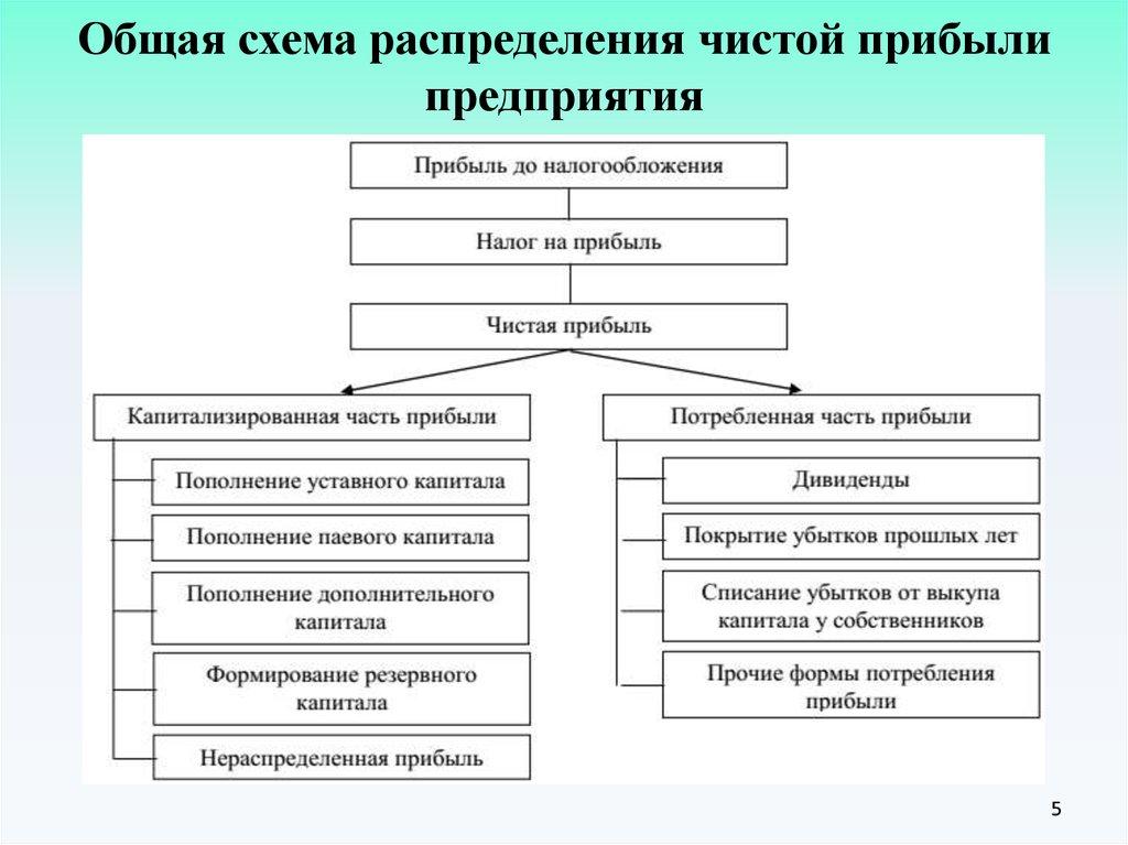 прибыли распределения формирования шпаргалка организации и учет