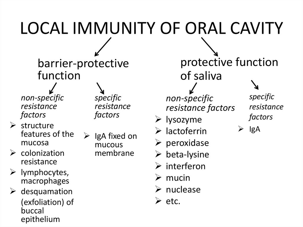 LOCAL IMMUNITY OF ORAL CAVITY