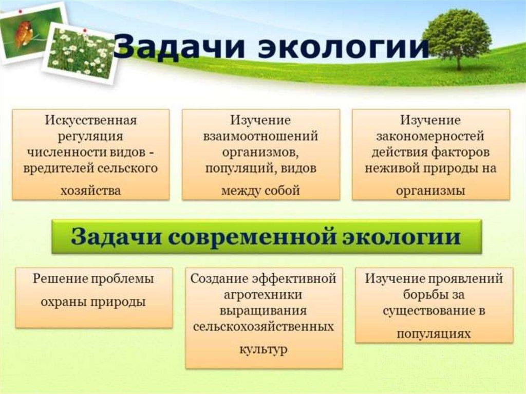 Методика решения задач экологии решение задачи 9 класса по геометрии