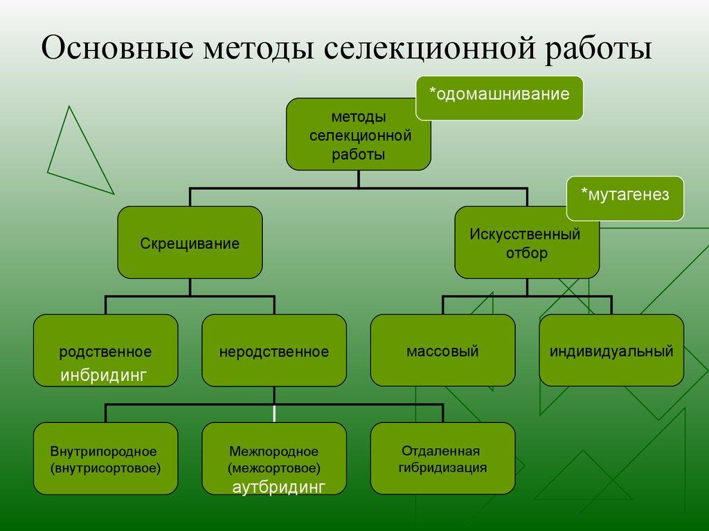 селекции растений по шпаргалки