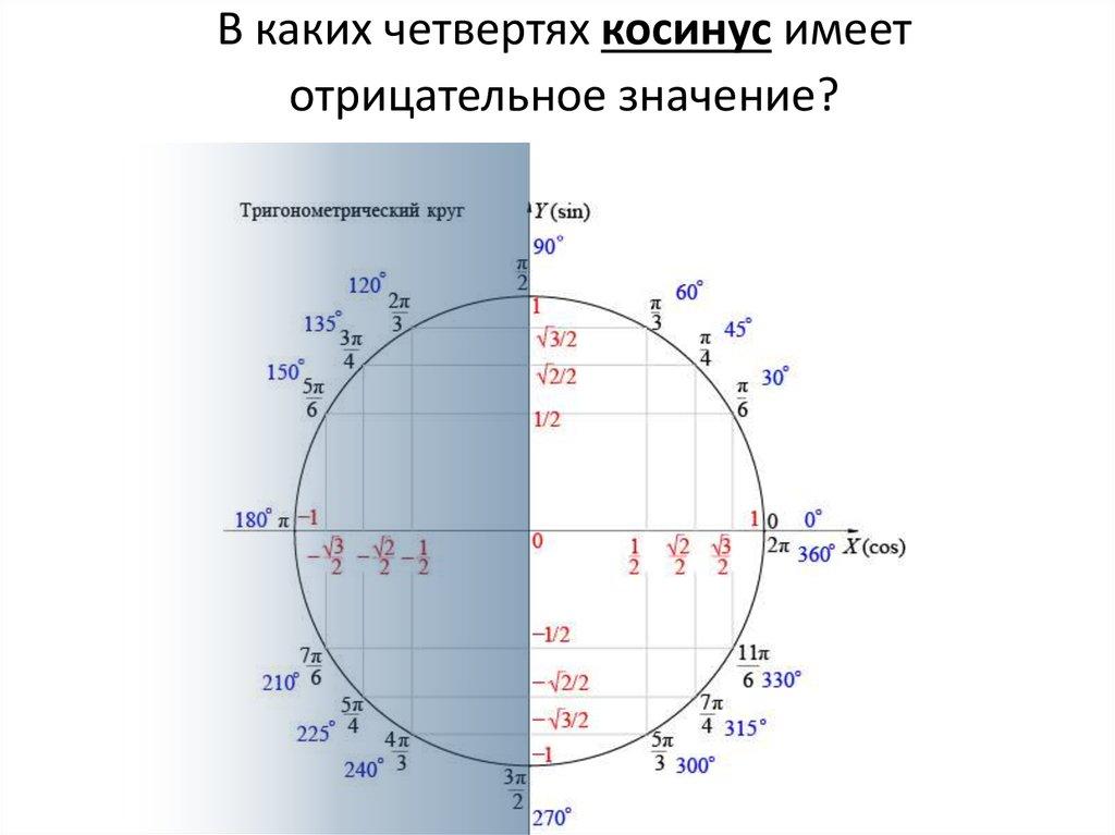 фото числа на окружности тригонометрия картинки ребёнок