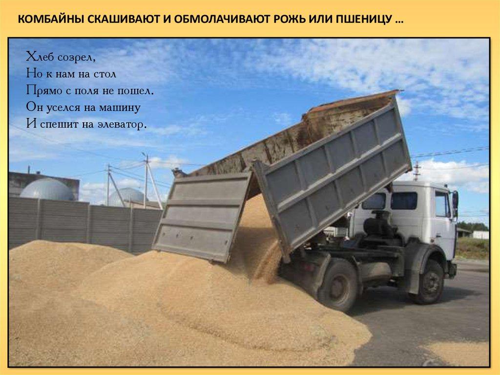 Машины везут зерно на элеватор картинки для детей купить комплектующие для конвейеров