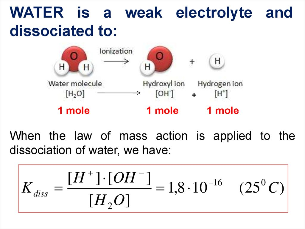 WATER is a weak electrolyte and dissociated to: