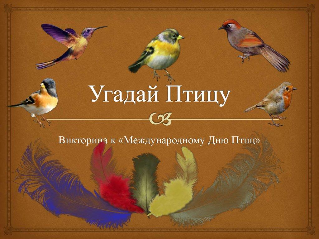 викторина о птицах картинка снимки церемонии все