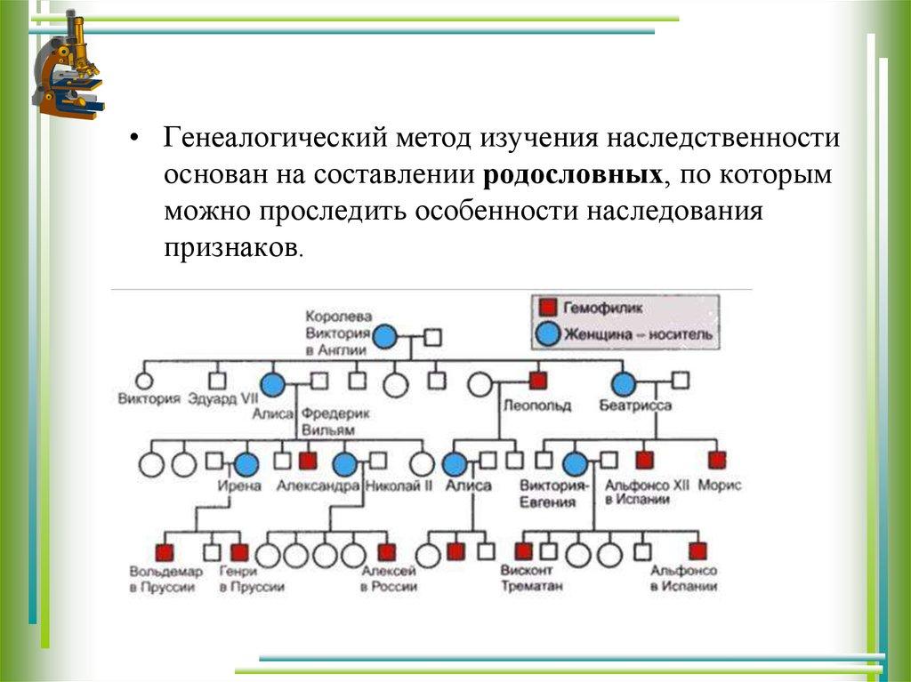 Решение генетических задач на анализ родословных решение задач по математики 3 класс онлайн
