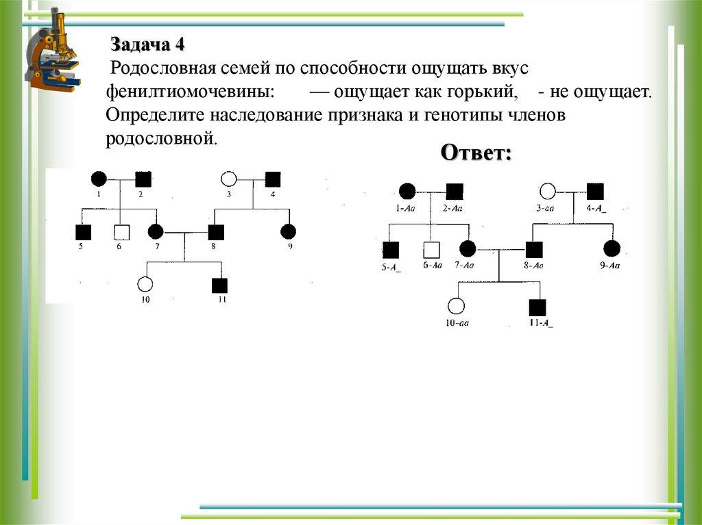 Пример решения задач на родословную 1с предприятие 8 решение оперативных задач