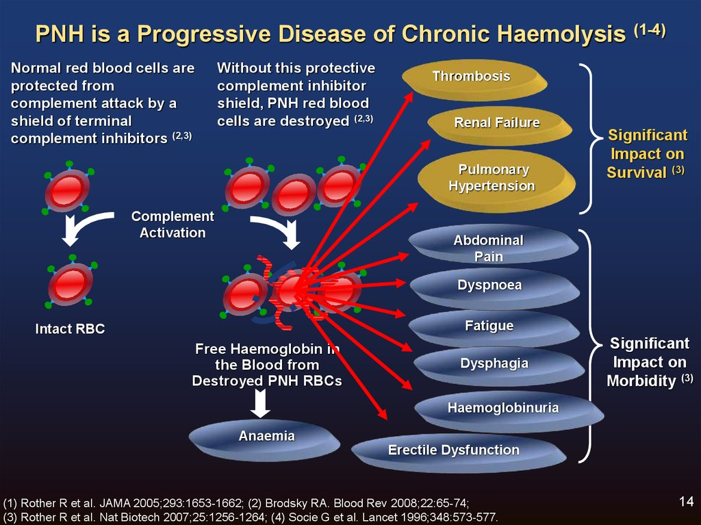 An Overview Of Pnh  Pathophysiology  New Diagnostic Guidelines And Eqa