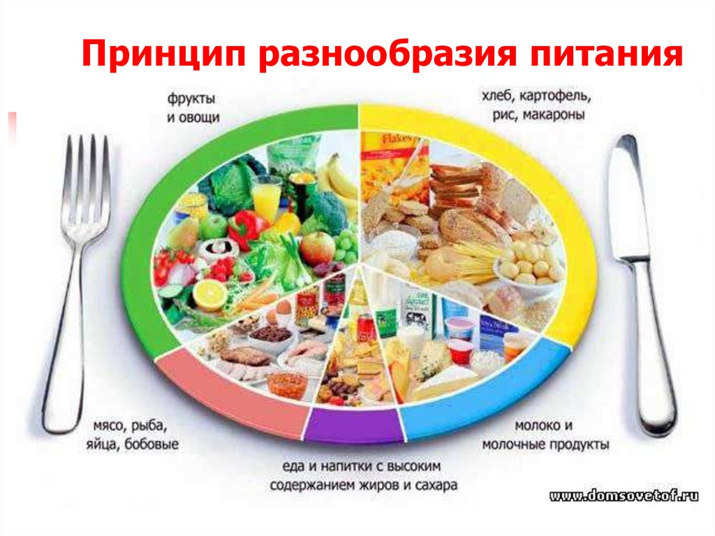 Основы рационального питания о похудения