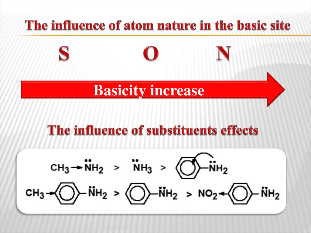The influence of atom nature in the basic site