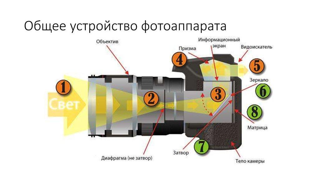 при контровом свете клинит фотоаппарат приготовления