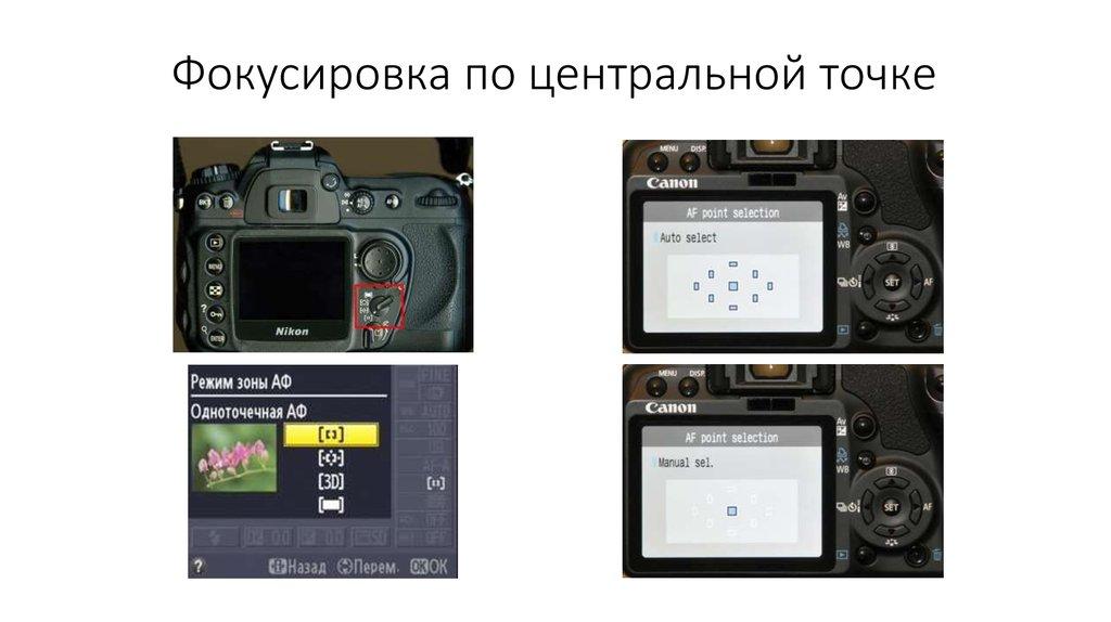 точки автофокуса в зеркальном фотоаппарате ночные