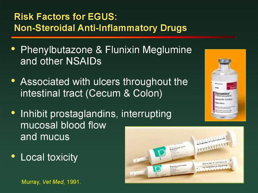 Risk Factors for EGUS: Non-Steroidal Anti-Inflammatory Drugs